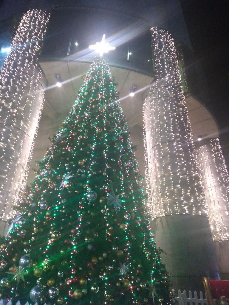 ニュージーランドのクリスマス